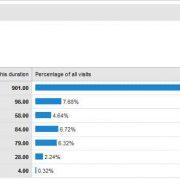 Visitor Statistics.